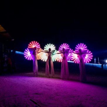 Ski Show pour les Nymphéas