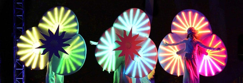 Les Nymphéas échassiers lumineux