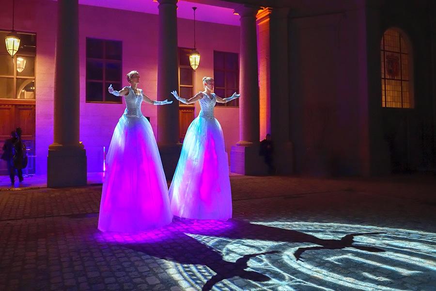 Lumière et ombre pour les Welcome, échassiers lumineux