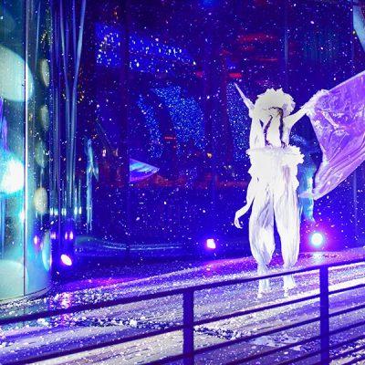 Neige et Féérix, échassiers blanc lumineux