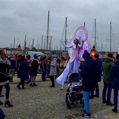 Nymphéas en balade sur le port de La Rochelle