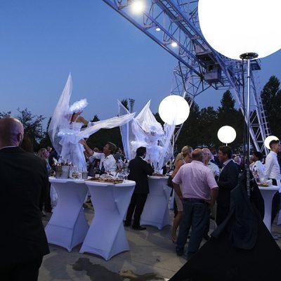 Les Féérix, échassiers blancs lumineux, au Azar Club