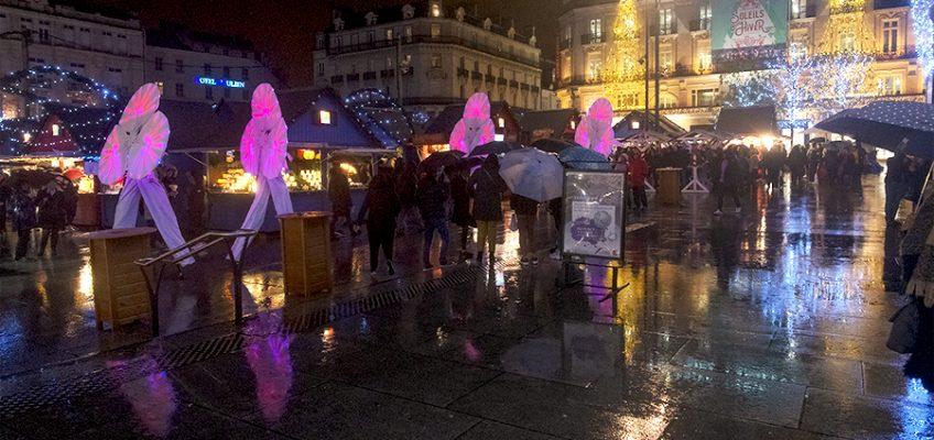 A Angers, les Nymphéas, échassiers lumineux