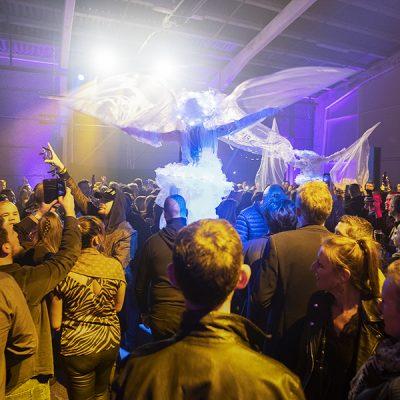 échassiers lumineux sur le dance-floor