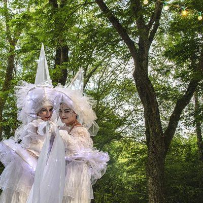 Les Féérix, échassiers blancs lumineux,au Parc des Oiseaux